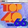 Top 40 Vol 66