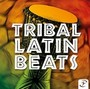 TRIBAL LATIN BEATS CD2 (128 BPM, Март 2015)