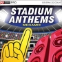 Stadium Anthems MegaMix (135 BPM, Январь 2016)